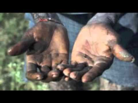 Child Slavery for chocolate industries