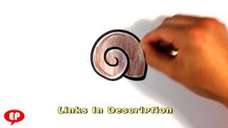 How to Draw a Snail Shell - Easy Pictures to Draw