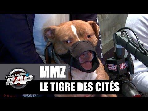 Youtube: MMZ – Le tigre des cités débarque dans #PlanèteRap!