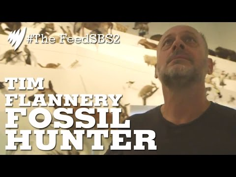 Tim Flannery: Fossil Hunter I The Feed