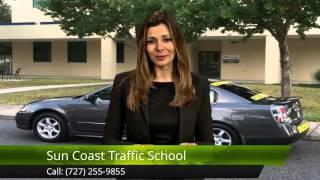 Mature program Florida driver