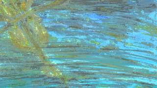Noches - Ariel Lazarus