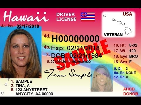 hawaii drivers permit required documents