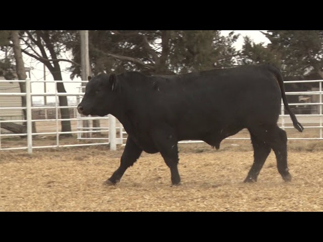 Express Ranches Lot 139