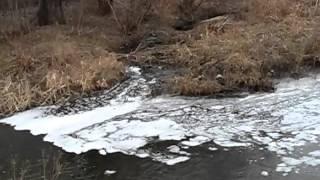 Богодухов  Уничтожение Мерлы(Загрязнение реки Мерла в Богодухове продолжается уже на протяжении очень долгого времени. Местная власть,..., 2016-03-27T18:03:21.000Z)