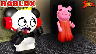 Escape from PIGGY in Roblox! Let's Play Roblox Piggy with Combo Panda