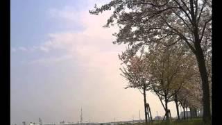 ワンダフル・ワールド / ウルフルズ (原曲:Sam Cooke / 「Wonderful W...