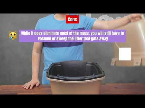 Best Litter Box For Multiple Cats - Meowkai