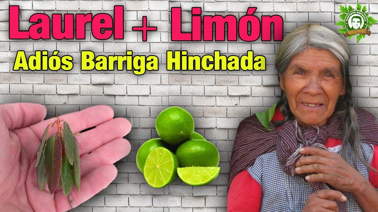 Mezcla de Limón con Laurel para bajar la Barriga hinchada y borrar kilos de Grasa