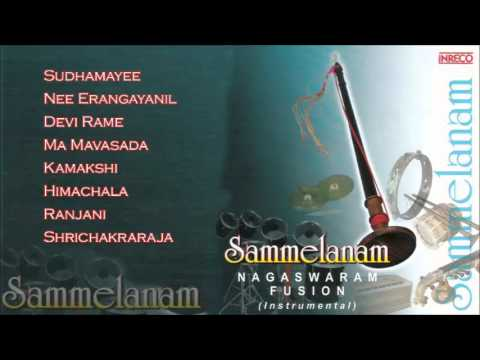 Best Of Gokul & Suren | Carnatic Instrumental | Sammelanam | Nagaswaram Fusion | Audio Jukebox