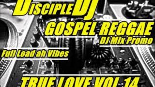 TRUELOVE V.14 2014 @DISCIPLEDJ MIX GOSPEL REGGAE