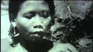 Tribe Gathers Food in the Malayan Jungle, 1940s - Film 95457