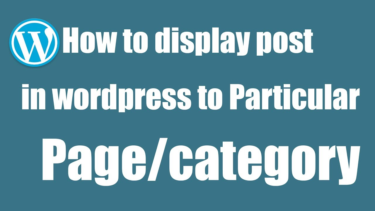 How to display post in WordPress to particular page or category