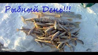 Зимняя рыбалка 2019 2020 Озеро Торма Клёвый клёв