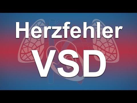 Herzfehler Einfach Erklärt: Ventrikelseptumdefekt (VSD)