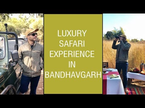 Travel Vlog : Luxury Safari Experience in Bandhavgarh | Riaan George