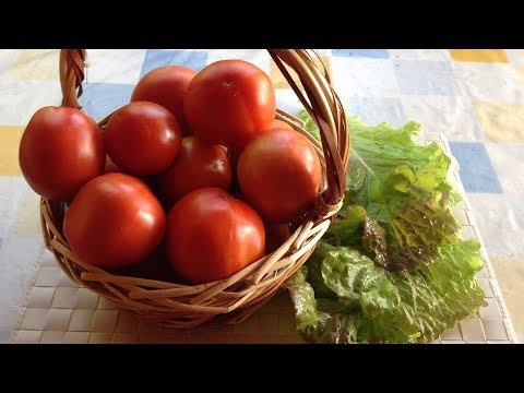 семена помидоров сорта