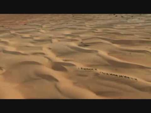 Ce qu'un scientifique découvre en ouvrant le Coran┇Islamde YouTube · Durée:  7 minutes 22 secondes