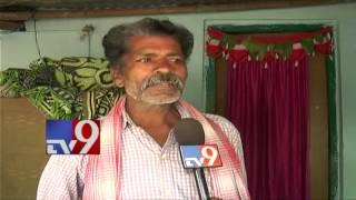 Elephants on rampage in Srikakulam - TV9