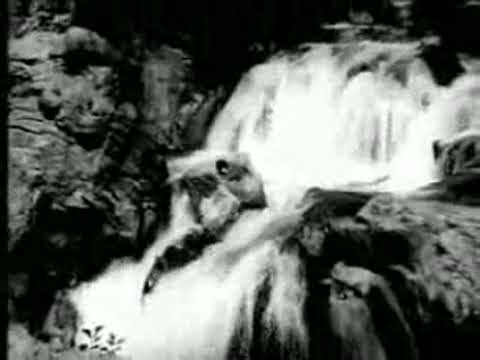 Or Aayiram Parvayile Songs by Vallavanukku Vallavan tamil video songs,download, video, song, mp3, free