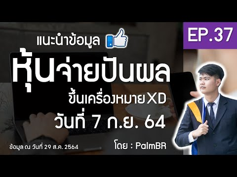 EP.37 | หุ้นจ่ายปันผล ขึ้น XD 7 ก.ย. 2564 #หุ้นปันผลดี #PalmBR