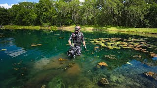 Treasure Hunting Subdivision Pond with Alligators and BIG Fish!! (Underwater Surprise)