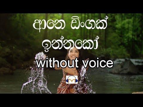 Aane Dingak Innako Karaoke (Without voice) ආනෙ ඩිංගක් ඉන්නකෝ