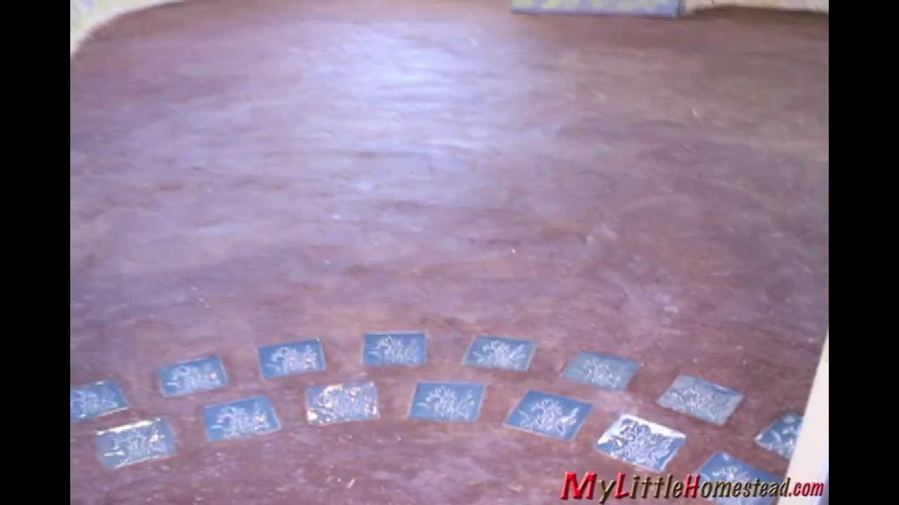 Homemade earthencob floor part 3 of radiant heat floor for homemade earthencob floor part 3 of radiant heat floor for earthbagsuperadobe house dailygadgetfo Images