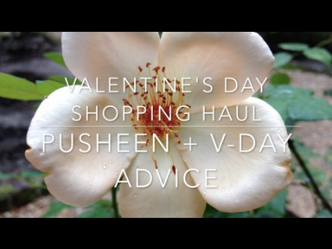 Valentine's Day Shopping Haul | Pusheen + V-Day Advice