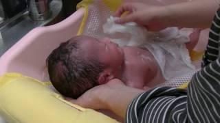 新生児の沐浴動画 最初の頃よりお母さんもちょっと上手になってきました...