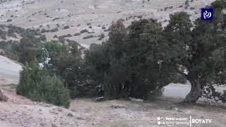وزير الزراعة يحذر من تعرض المنطقة لكارثة بسبب الجراد - (20/2/2020)