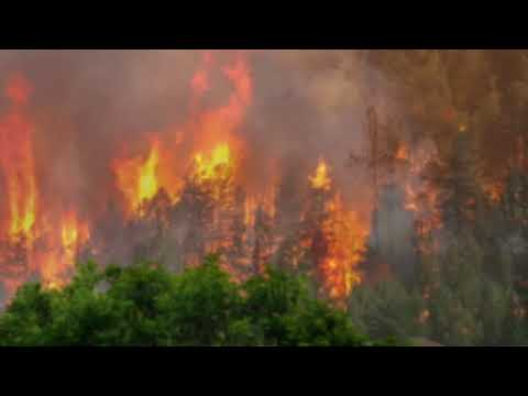 Durango wildfire update Fire doubles in 24 hours - how many have been evacuated