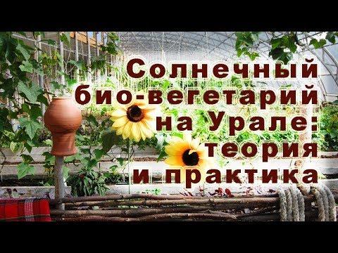 Солнечный био-вегетарий на