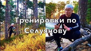 Тренировки по методикам В.Н.Селуянова. Миофибриллы и митохондрии.