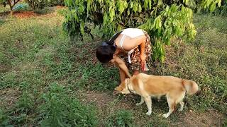 Wow Amazing Beautiful Girl Playing With Dog   Smart & Funny Dog cat Part28