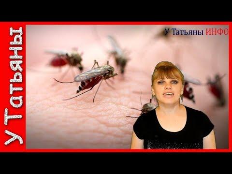 укус комара фото
