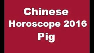 Chinese Horoscope 2016 Pig