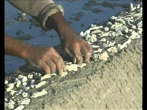 Một thoáng Ninh Thuận: Làng muối Khánh Tường