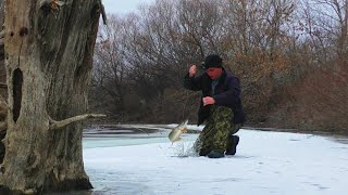 Голодные щуки в отшнурованном ерике Косяки судака и карася подо льдом Рыбалка в Астрахани 2021