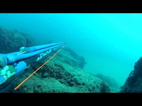 SPEARFISHING WITH FLASHER-  TEST DRIVE  ! HD !!!