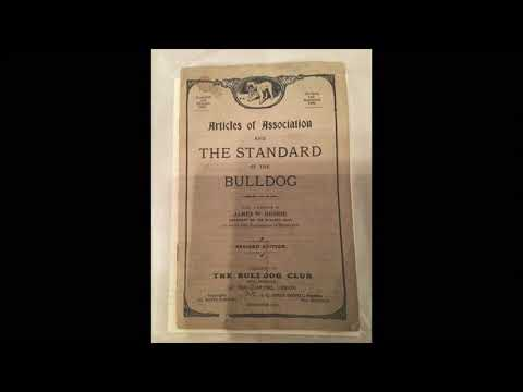 The bulldog bible / standard 1913