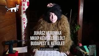 MKKP VÁLASZTÁSI TÉVÉREKLÁM 2018 (GORILLA)