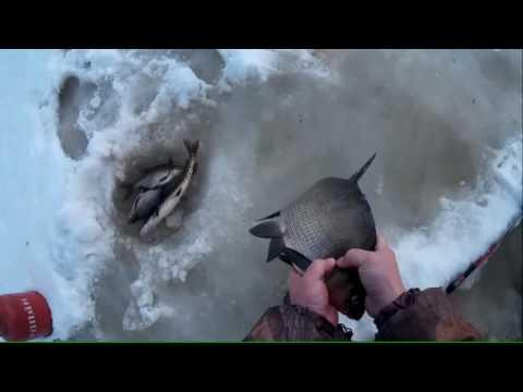 зимняя рыбалка - 2017-01-22 14:44:05