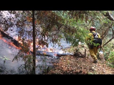 Crews Battle New Wildfire in Northern Calif.