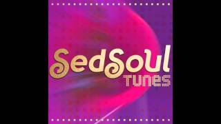 SedSoul Tunes 2016 - Never Gonna Let You Go