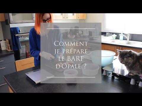 Comment Je Prépare Les Rations BARF D'Opale ?