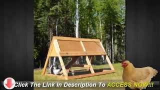 How To Build An Inexpensive Chicken Coop - Cold Weather Chicken Coop