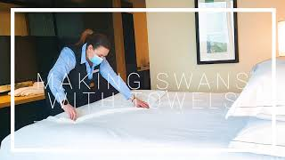 Make Swans with Towels