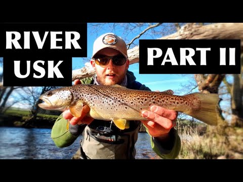 UK Wild Brown Trout Fishing - River Usk, Wales. - Part 2