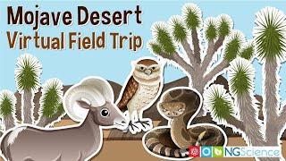 Mojave Desert – Virtual Field Trip